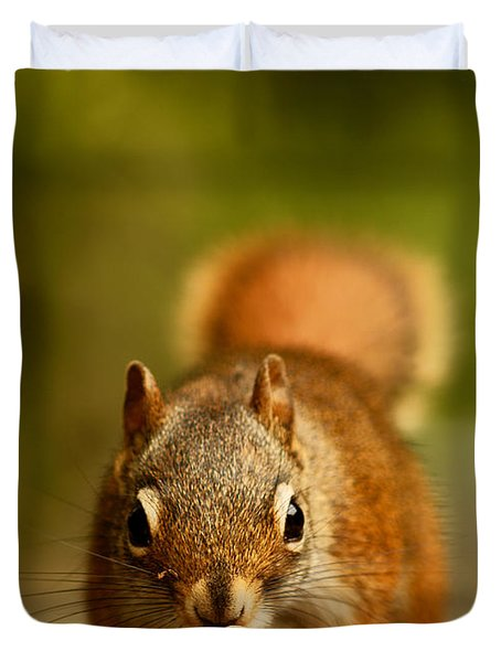 Red Squirrel   Duvet Cover by Cale Best