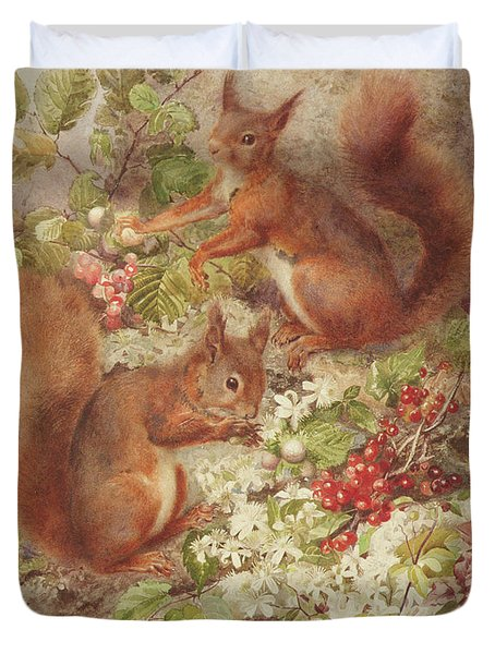 Red Squirrels Gathering Fruits And Nuts Duvet Cover by Rosa Jameson