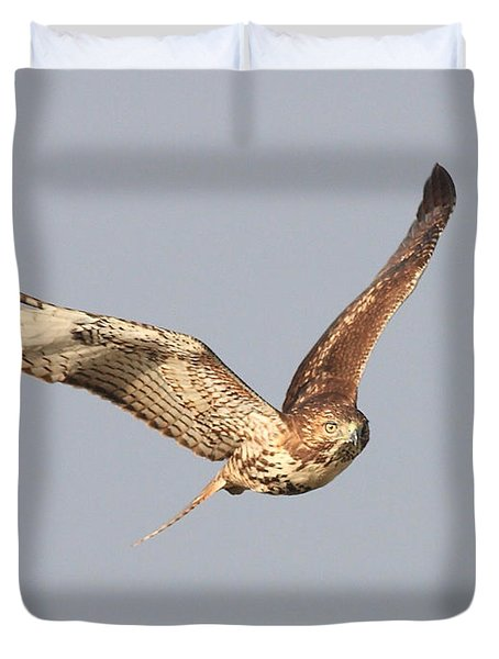 Red Tailed Hawk - 20100101-7 Duvet Cover by Wingsdomain Art and Photography