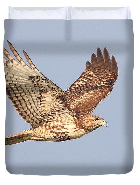 Red Tailed Hawk 20100101-1 Duvet Cover by Wingsdomain Art and Photography