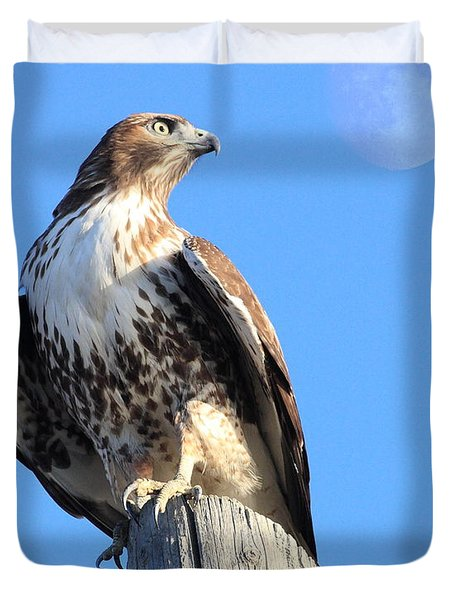 Red Tailed Hawk and Moon Duvet Cover by Wingsdomain Art and Photography