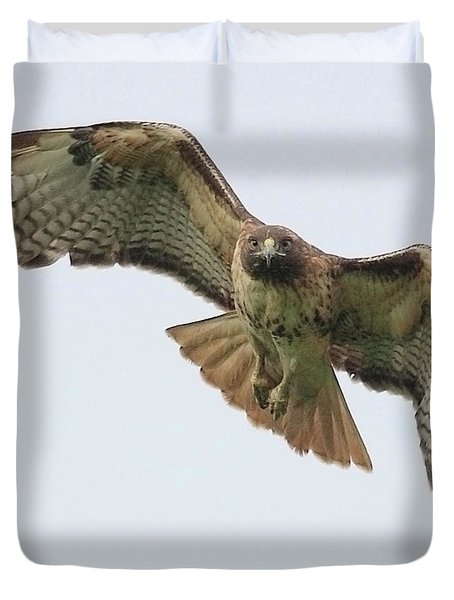 Red Tailed Hawk Finds Its Prey Duvet Cover by Wingsdomain Art and Photography