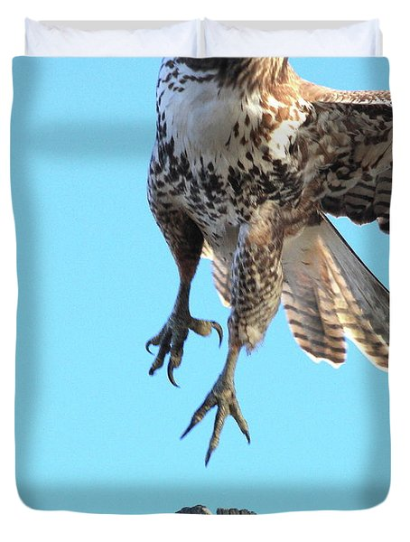Red Tailed Hawk Taking Off . 40d10170 Duvet Cover by Wingsdomain Art and Photography