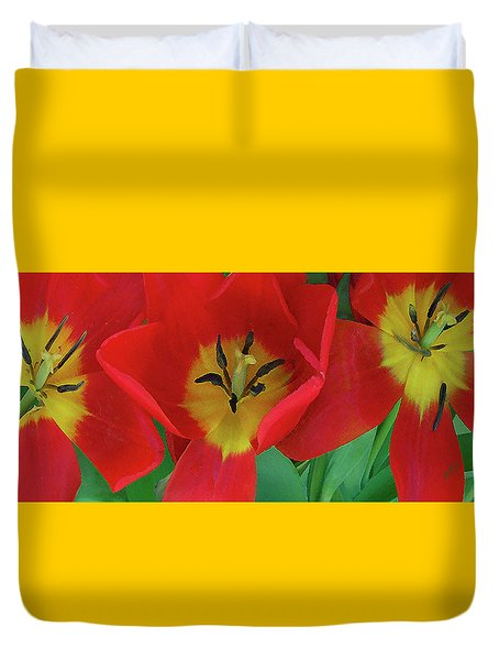 Red Tulip Trio Duvet Cover by Ben and Raisa Gertsberg