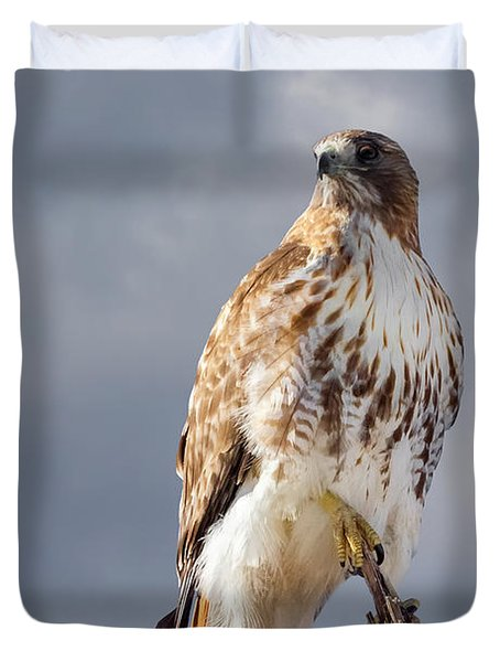 Redtail Portrait Duvet Cover by Bill  Wakeley