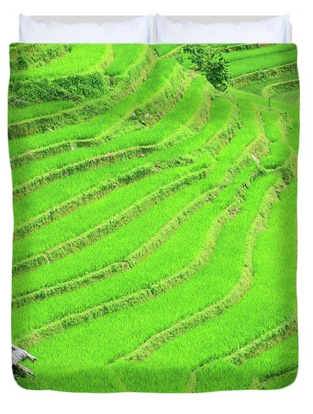 Rice Field Terraces Duvet Cover by MotHaiBaPhoto Prints
