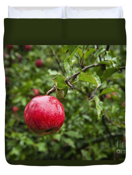 Ripe Apples. Duvet Cover by John Greim