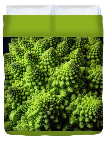 Romanesco Broccoli Duvet Cover by Garry Gay