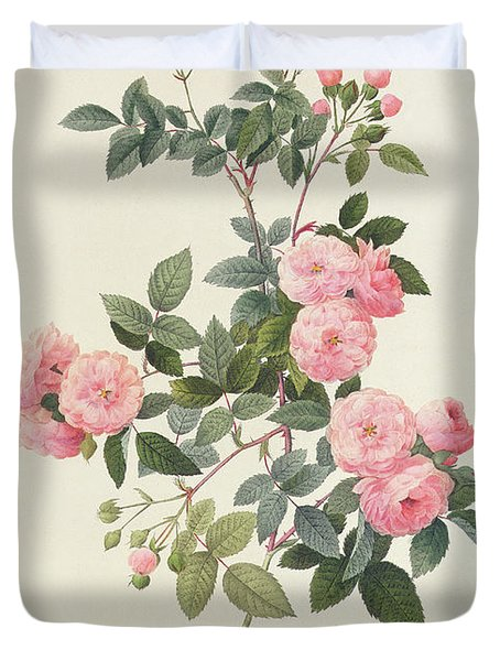 Rosa Multiflora Carnea Duvet Cover by Pierre Joseph Redoute