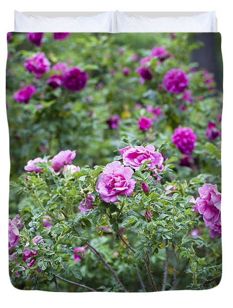 Rose Garden Duvet Cover by Frank Tschakert