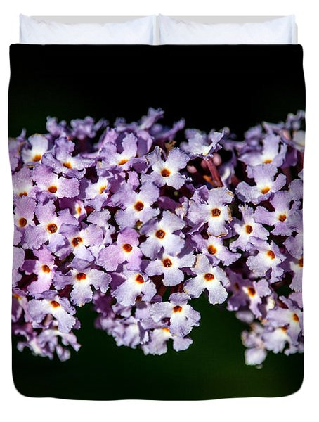 Rows And Flows Of Angel Flowers Duvet Cover by John Haldane