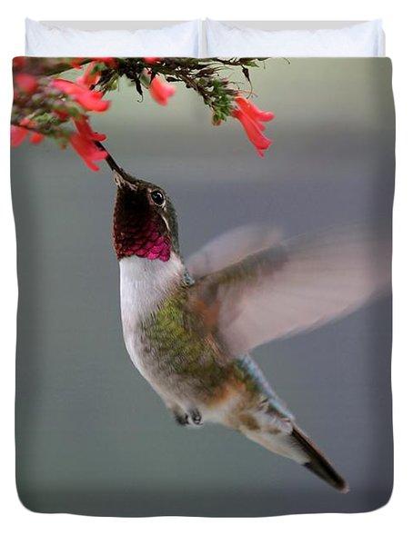 Ruby Throated Hummingbird Duvet Cover by Sabrina L Ryan