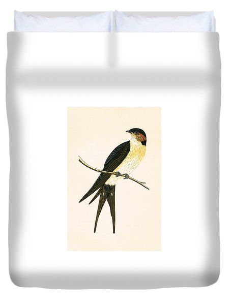 Rufous Swallow Duvet Cover by English School