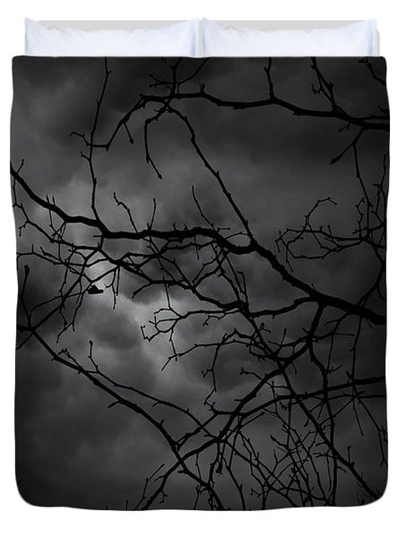 Ruler Of The Night Duvet Cover by Lourry Legarde