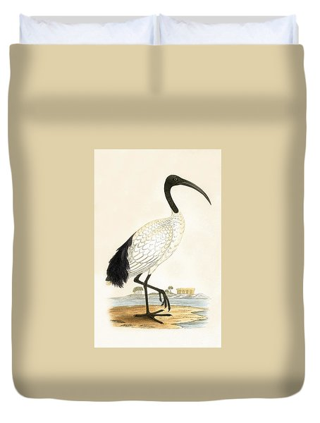 Sacred Ibis Duvet Cover by English School