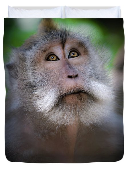 Sacred Monkey Forest Sanctuary Duvet Cover by Larry Marshall