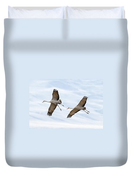 Sandhill Crane Approach Duvet Cover by Mike Dawson
