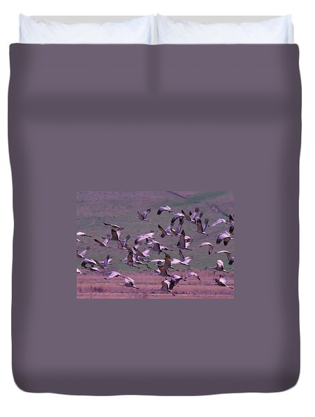 Sandhill Cranes  Duvet Cover by Jeff Swan