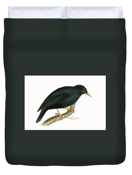 Sardinian Starling Duvet Cover by English School