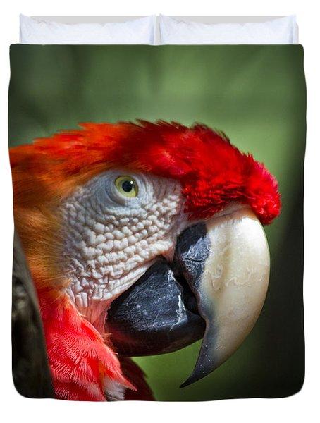 Scarlet Macaw Duvet Cover by Roger Wedegis
