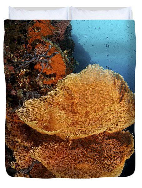 Sea Fan Coral - Indonesia Duvet Cover by Steve Rosenberg - Printscapes