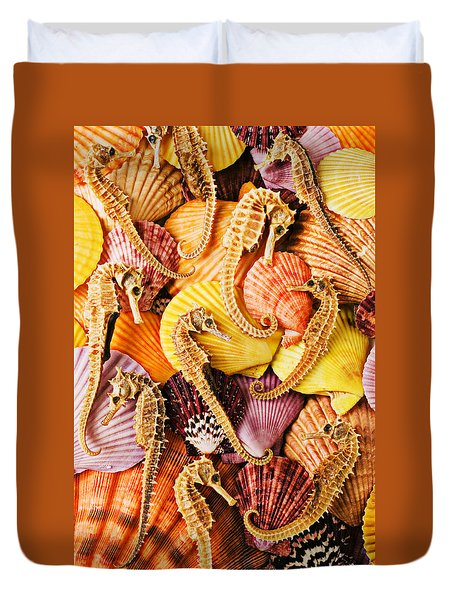 Sea Horses And Sea Shells Duvet Cover by Garry Gay