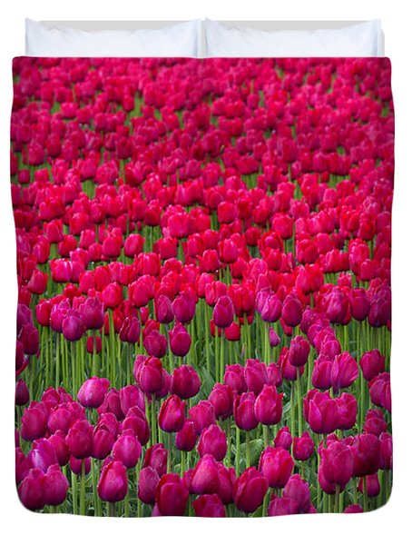 Sea Of Tulips Duvet Cover by Mike  Dawson