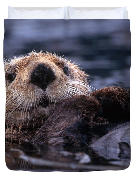 Sea Otter Duvet Cover by Yva Momatiuk and John Eastcott and Photo Researchers
