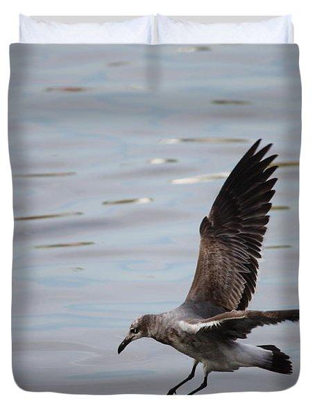 Seagull Landing Duvet Cover by Carol Groenen