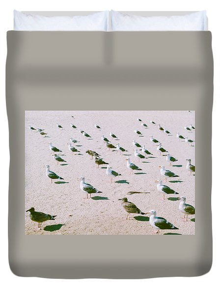 Seagulls  Duvet Cover by Ariane Moshayedi