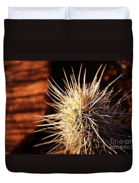 Sedona Duvet Cover by Linda Knorr Shafer