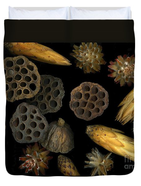 Seeds And Pods Duvet Cover by Christian Slanec