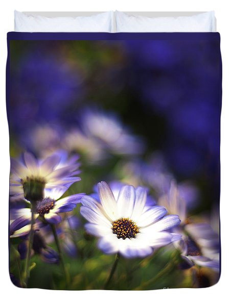 Senetti Dreams Duvet Cover by Dorothy Lee