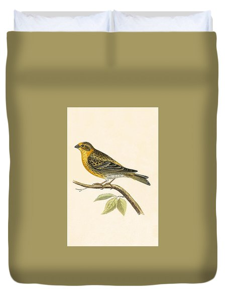 Serin Finch Duvet Cover by English School