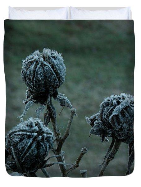 Shadowy Frozen Pods from the Darkside Duvet Cover by Douglas Barnett