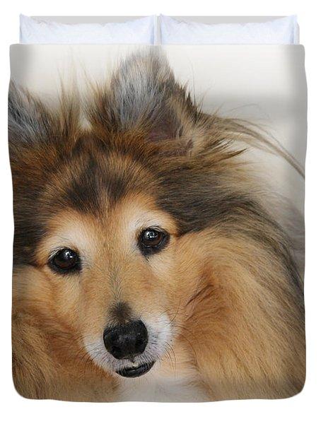 Sheltie Dog - A Sweet-natured Smart Pet Duvet Cover by Christine Till