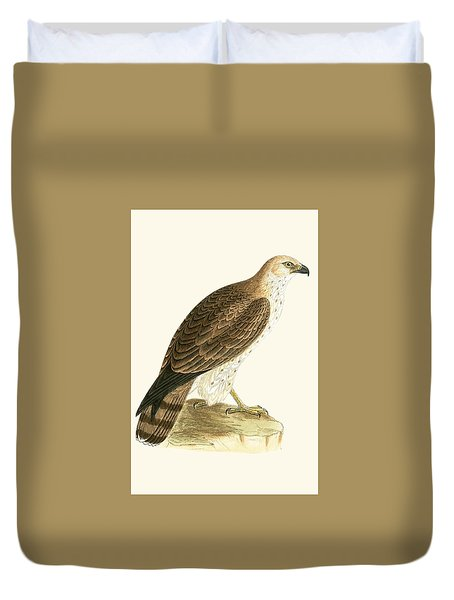 Short Toed Eagle Duvet Cover by English School