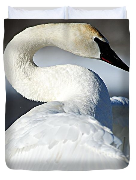 Showing Off Duvet Cover by Larry Ricker