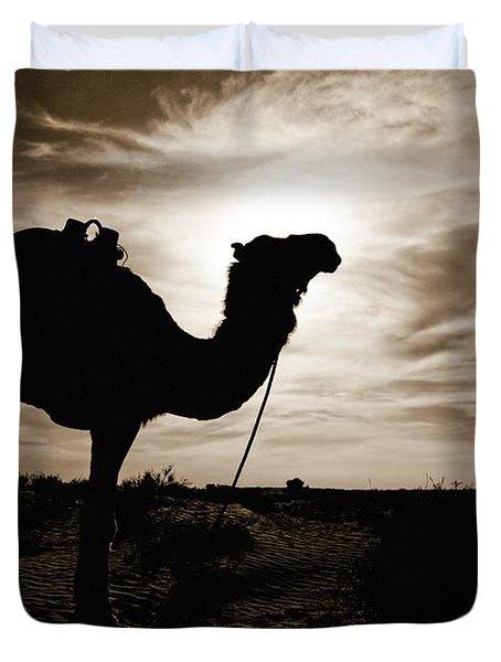 Silhouetted Camel, Sahara Desert, Douz Duvet Cover by David DuChemin