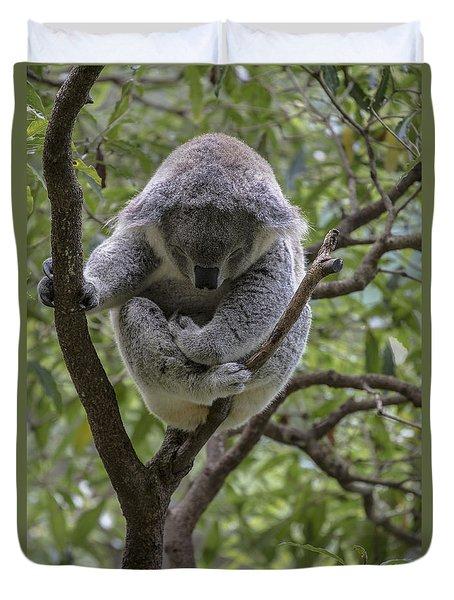 Sleepy koala Duvet Cover by Sheila Smart
