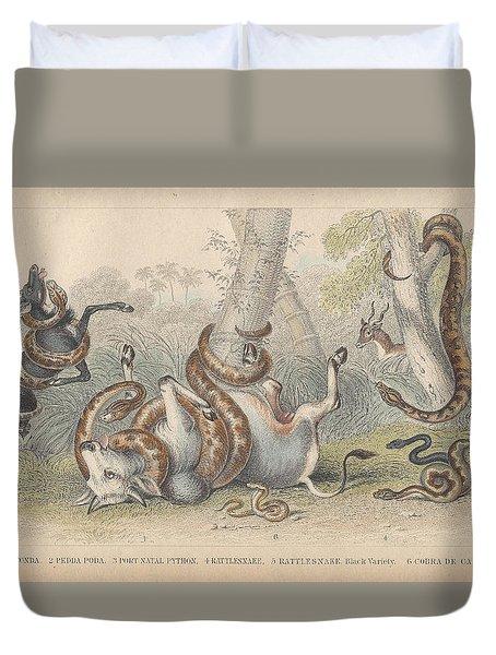 Snakes Duvet Cover by Oliver Goldsmith