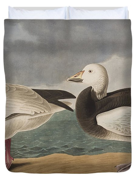 Snow Goose Duvet Cover by John James Audubon