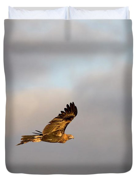 Soaring Pair Duvet Cover by Mike  Dawson