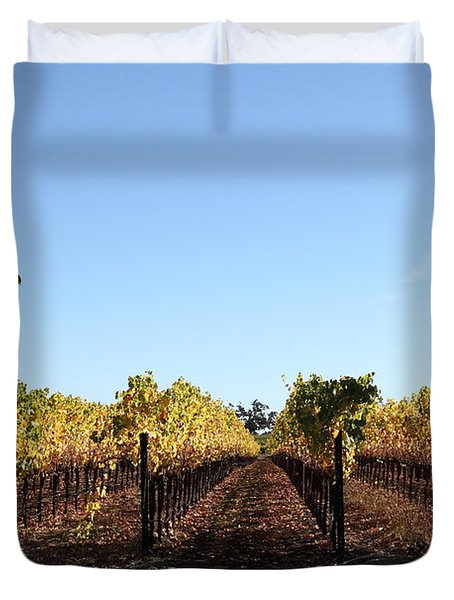 Sonoma Vineyards - Sonoma California - 5D19314 Duvet Cover by Wingsdomain Art and Photography