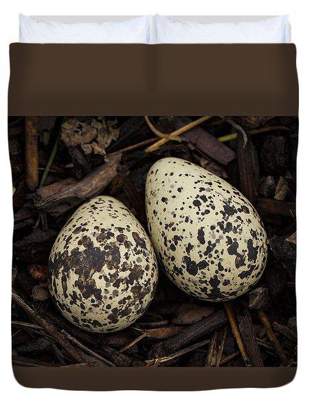 Speckled Killdeer Eggs By Jean Noren Duvet Cover by Jean Noren