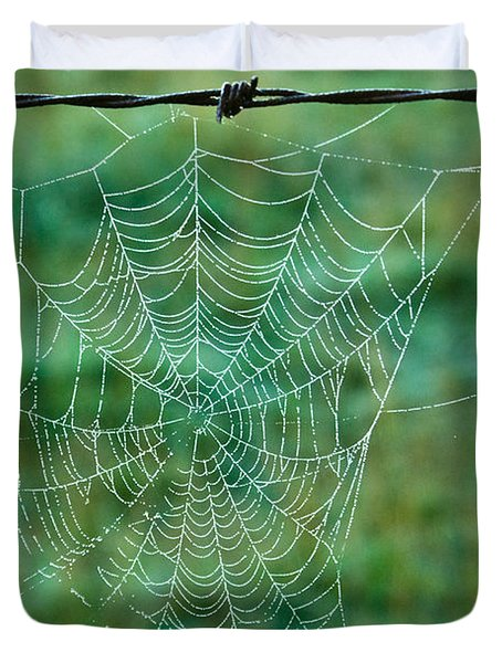 Spider Web in the Springtime Duvet Cover by Douglas Barnett