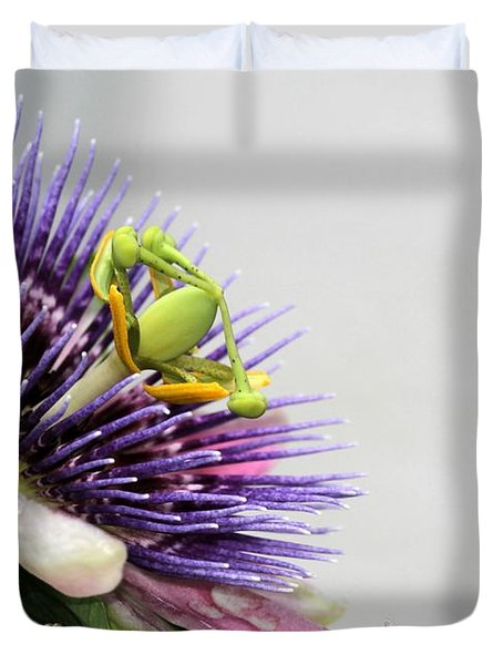Spikey Passion Flower Duvet Cover by Sabrina L Ryan