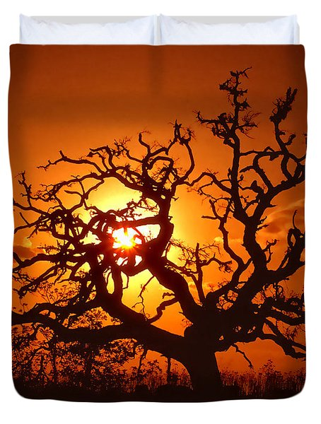 Spooky Tree Duvet Cover by Stephen Anderson