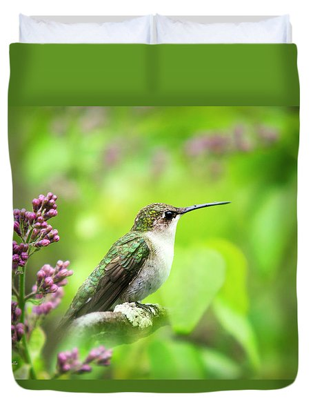 Spring Beauty Ruby Throat Hummingbird Duvet Cover by Christina Rollo