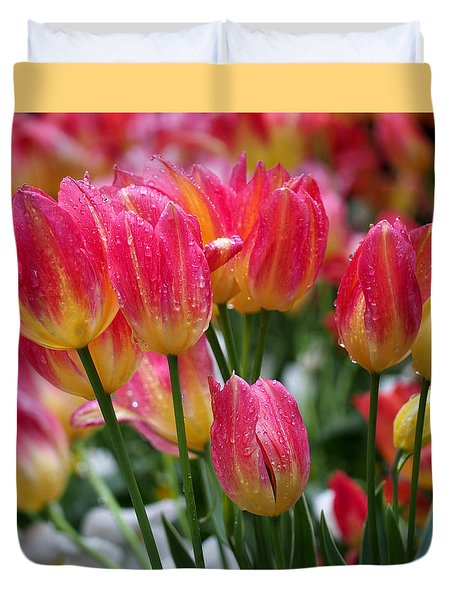 Spring Tulips In The Rain Duvet Cover by Rona Black